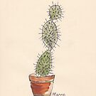 Opuntia cactus by Maree Clarkson