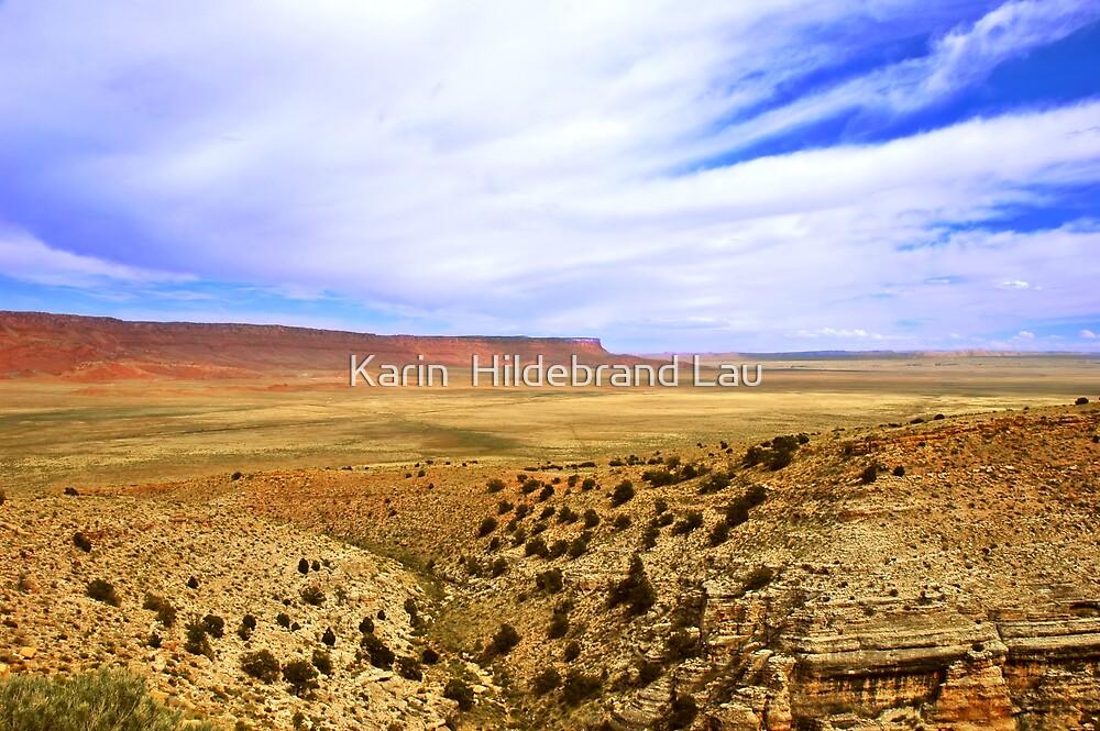 Vermillion Cliffs by Karin  Hildebrand Lau