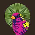 Sparrow Spectrum by Dan Tabata