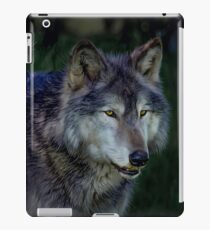 The Night of The Wolf iPad Case/Skin