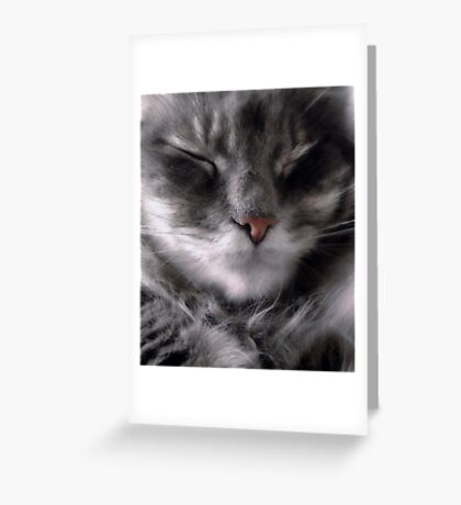 Sometimes She's Happy Greeting Card