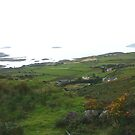 Ring Of Kerry Panorama by Larry149
