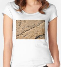 Fascinating Fossils Take One Women's Fitted Scoop T-Shirt