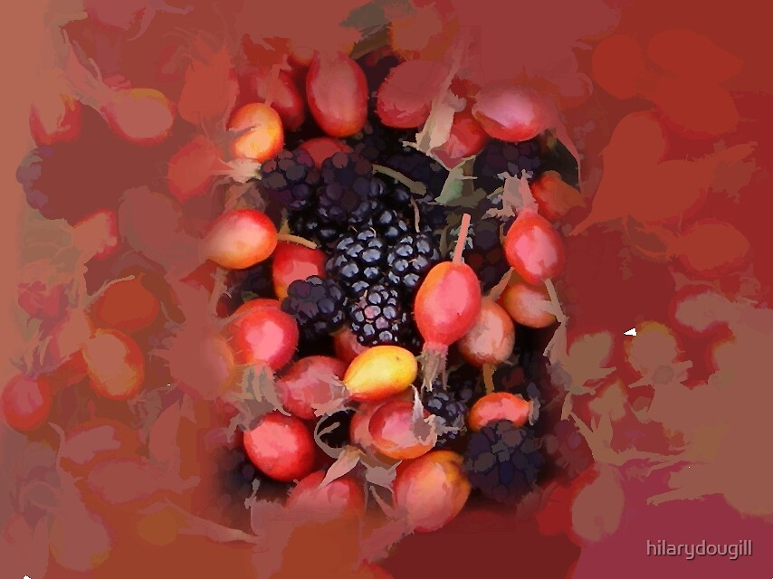 Abstract of autumn fruits by hilarydougill