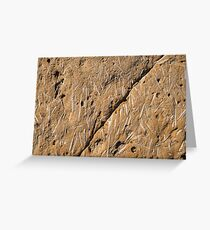 Fascinating Fossils Take Two Greeting Card