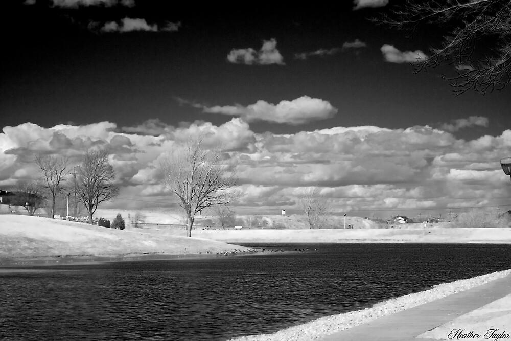 beautiful sky by tonks1104