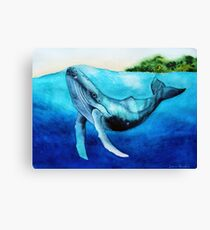 Swimming Beauty Canvas Print
