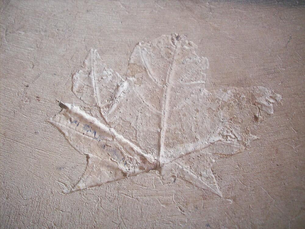 Imprint by ripinamberlost