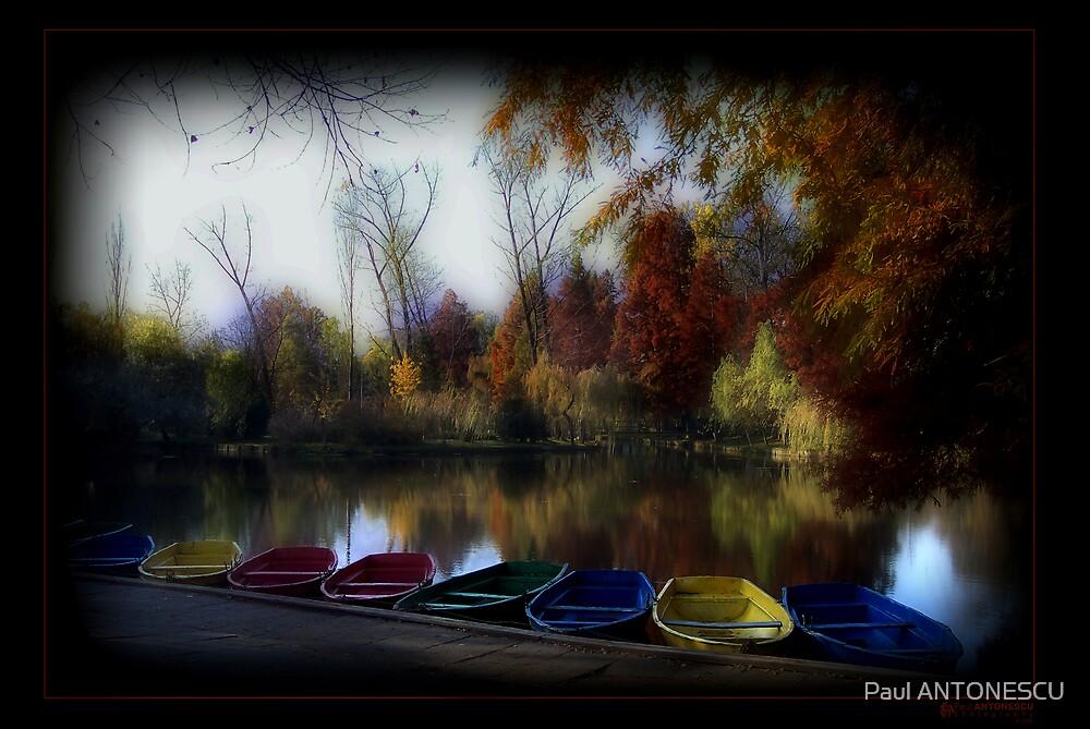 Fall at the lake by Paul ANTONESCU