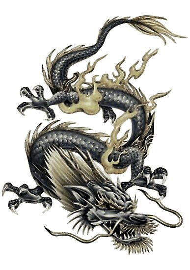Chinese Dragon In Gray and Gold by taiche