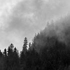 Alpine Foothils by metriognome