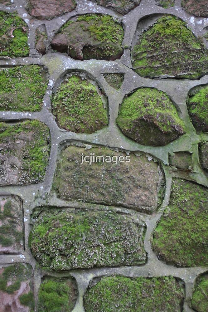 Brick Wall by jcjimages