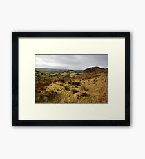 The rolling hills of Bantry Framed Print