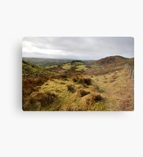The rolling hills of Bantry Metal Print