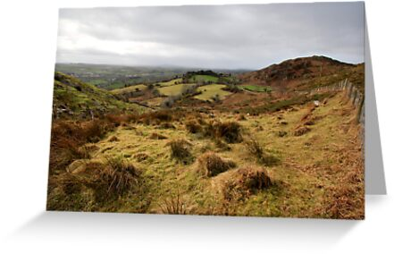The rolling hills of Bantry by Donncha O Caoimh