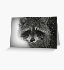 Our Nightly Visitor Greeting Card