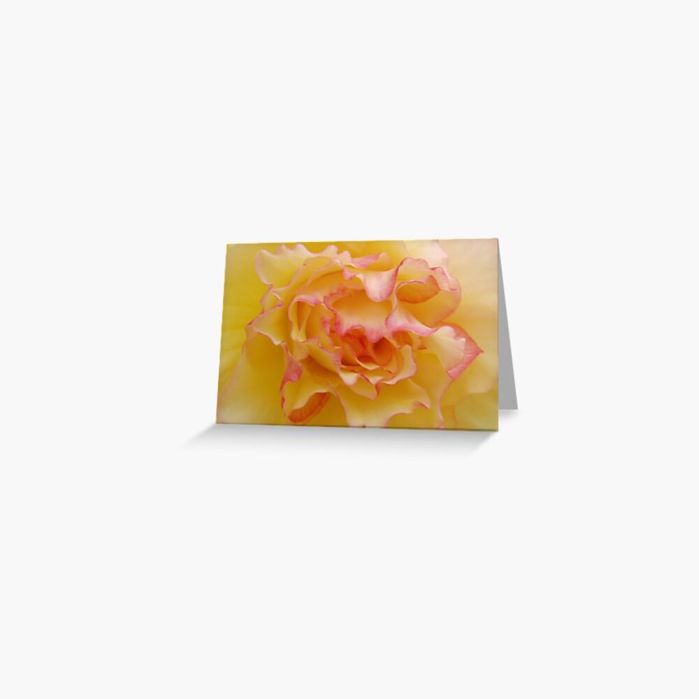 Begonia 3 Greeting Card