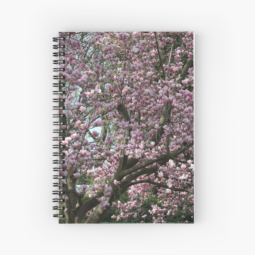 Magnolia Song Spiral Notebook