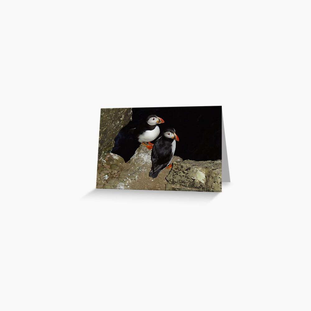 Puffins at night Greeting Card