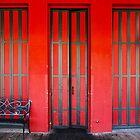 Sacramento Red Door by Igor Shrayer