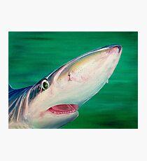 Blue Shark Portrait Photographic Print