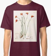 Nova genera et species plantarum V1 V3 Plates Karl Friedrich Philipp von Martius 1834 197 Classic T-Shirt