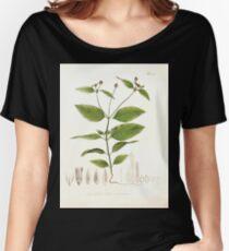 Nova genera et species plantarum V1 V3 Plates Karl Friedrich Philipp von Martius 1834 138 Women's Relaxed Fit T-Shirt