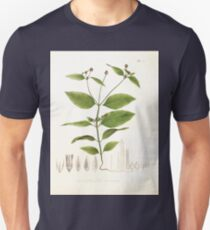 Nova genera et species plantarum V1 V3 Plates Karl Friedrich Philipp von Martius 1834 138 Unisex T-Shirt