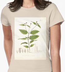 Nova genera et species plantarum V1 V3 Plates Karl Friedrich Philipp von Martius 1834 138 Womens Fitted T-Shirt