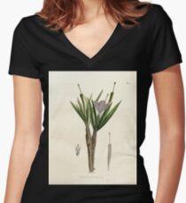 Nova genera et species plantarum V1 V3 Plates Karl Friedrich Philipp von Martius 1834 011 Women's Fitted V-Neck T-Shirt