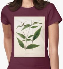 Nova genera et species plantarum V1 V3 Plates Karl Friedrich Philipp von Martius 1834 129 Womens Fitted T-Shirt