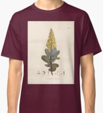 Nova genera et species plantarum V1 V3 Plates Karl Friedrich Philipp von Martius 1834 086 Classic T-Shirt