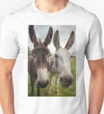 Donkeys in Macroom Ireland T-Shirt