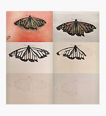 Butterfly Progress Photographic Print
