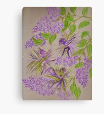 french lilacs Canvas Print