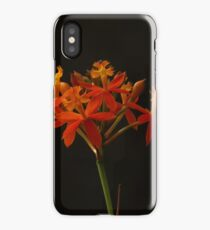 Wild orchid iPhone Case/Skin