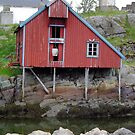 House in A_Norway_Scandinavia by Kay Cunningham