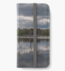 Silvery Reflections iPhone Wallet/Case/Skin