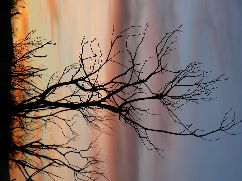 Sunrise by gertbytrucks
