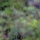 Green Rainy Day by sarah ward