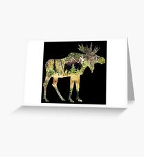 Moose in silhouette Greeting Card