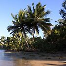 Dominican Beach by Johnny Furlotte