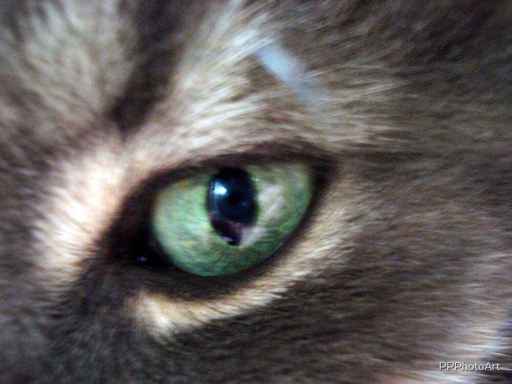 Green eyes by PPPhotoArt