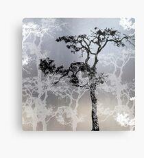 Silver Linings.. Metal Print
