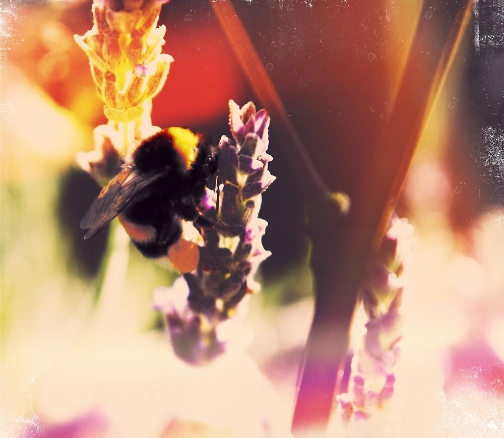 Bumble bea by MjrGDesign