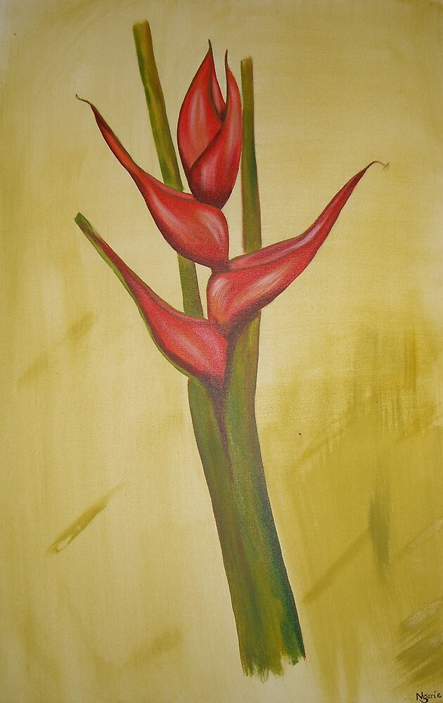 Heliconia 3 by Ngariec