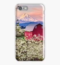 Red Barn in the Orchard iPhone Case/Skin
