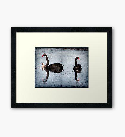 Morning on Dangars Lagoon II Framed Print