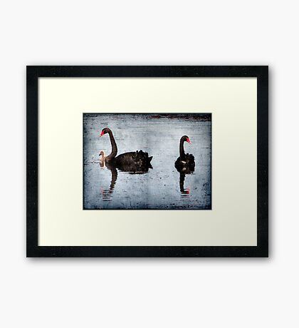 Morning on Dangars Lagoon II Framed Print