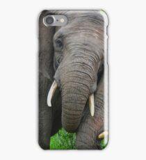 """Just Married"" (Loxodonta africana) iPhone Case/Skin"